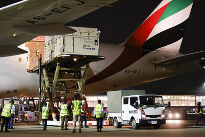 Haneda history-making: the first full cargo load of horses ever to land in Tokyo's Haneda airport ready for the Tokyo 2020 Olympic Games Equestrian competitions. © FEI/Yusuke Nakanishi